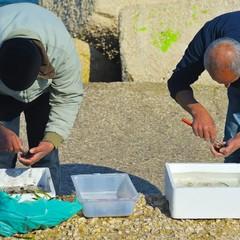 Pescatori sul lungomare di Bari