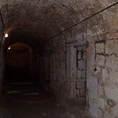 Cripta della Cattedrale di Bisceglie