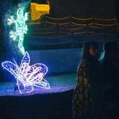 luminarie trani