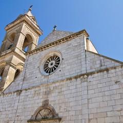 Cattedrale Santa Maria Assunta a Minervino Murge