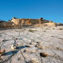 Orme di dinosauri a Cava Pontrelli ad Altamura