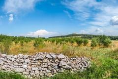 Viaggio nella Puglia imperiale di Federico II
