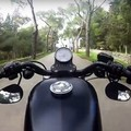 Da Trani a Castel del Monte a bordo di una Harley Davidson